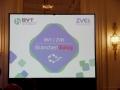 BVT - ZVEI Branchendialog