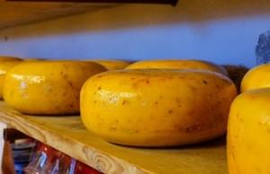 Käse schneidet man am besten mit einem Allesschneider in Scheiben