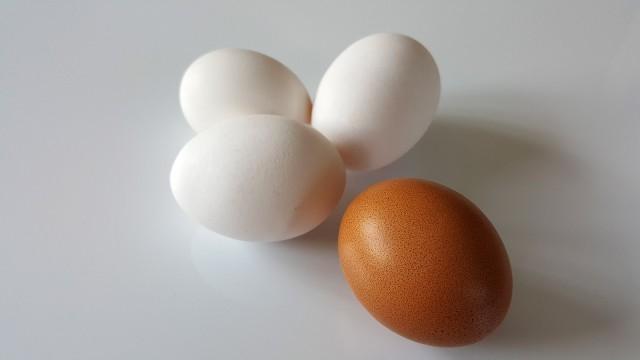 Eier für Eierkochertest